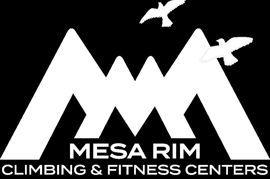 Mesa Rim Climbing Academy