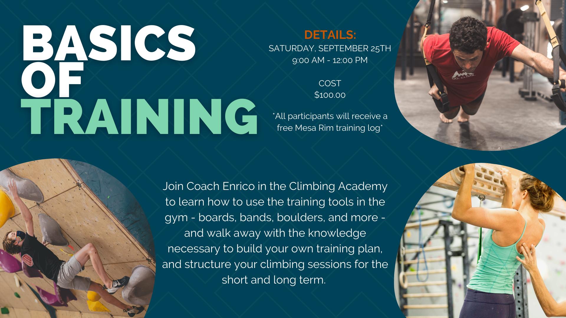 Basics of Training
