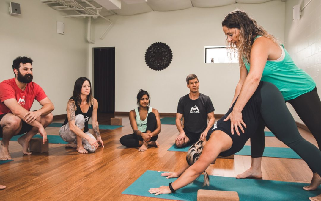 Why Yoga Teacher Training?
