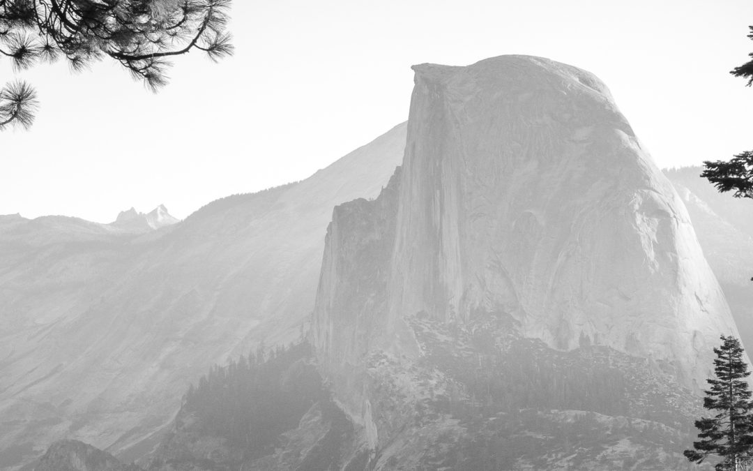 WIN A WEEK OF VOLUNTEERING IN YOSEMITE