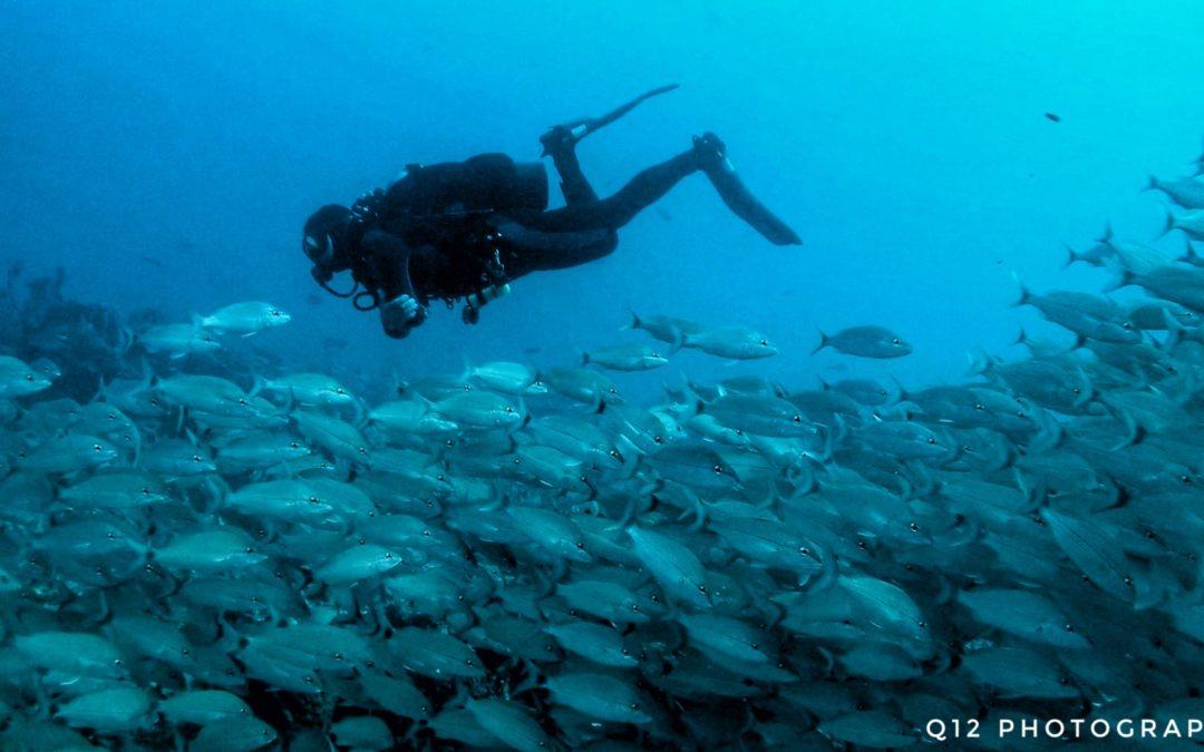 Climbing's Soulmate: Scuba Diving