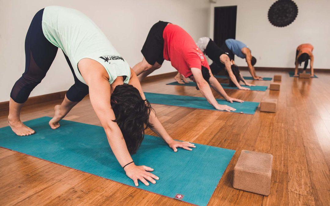 Free Monthly Yoga Basics Class
